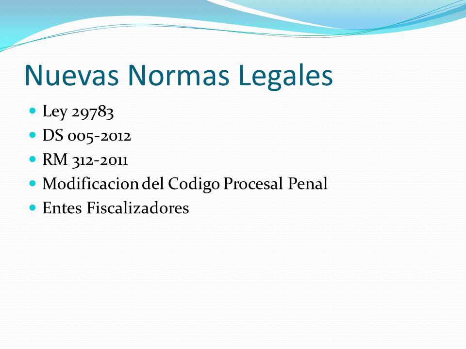 Nuevas Normas Legales Ley 29783 DS 005-2012 RM 312-2011