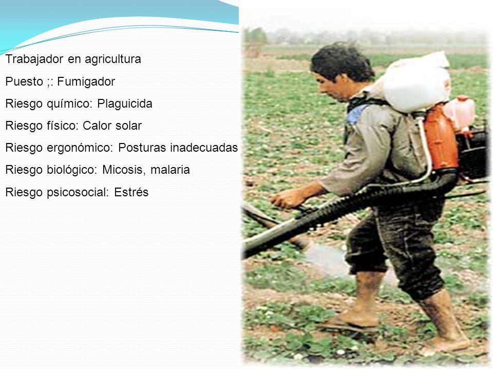 Trabajador en agricultura