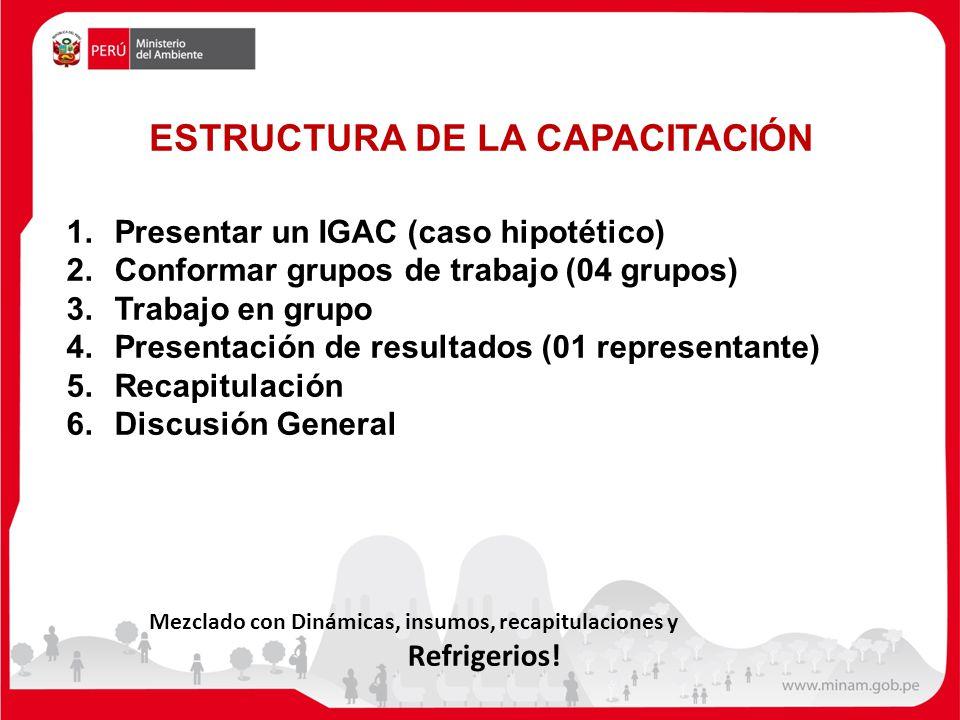 ESTRUCTURA DE LA CAPACITACIÓN