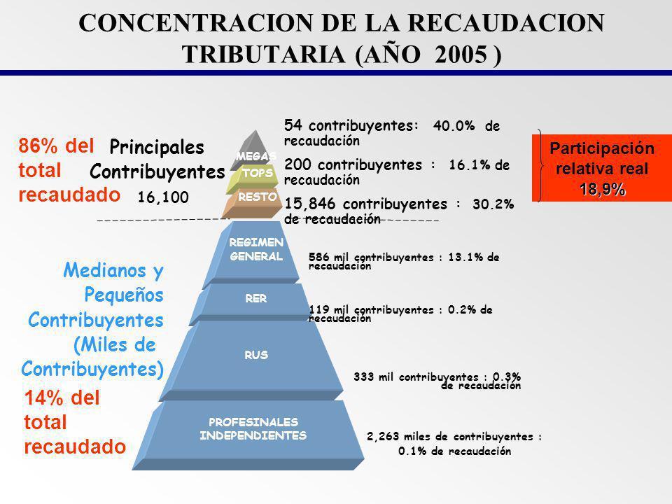 CONCENTRACION DE LA RECAUDACION TRIBUTARIA (AÑO 2005 )