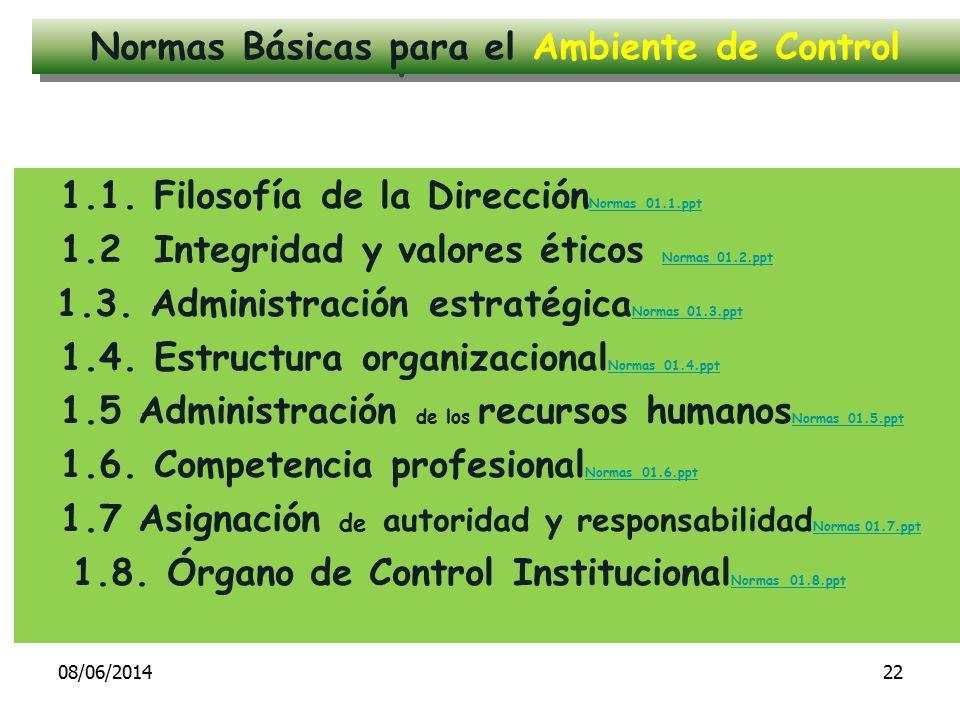 Normas Básicas para el Ambiente de Control