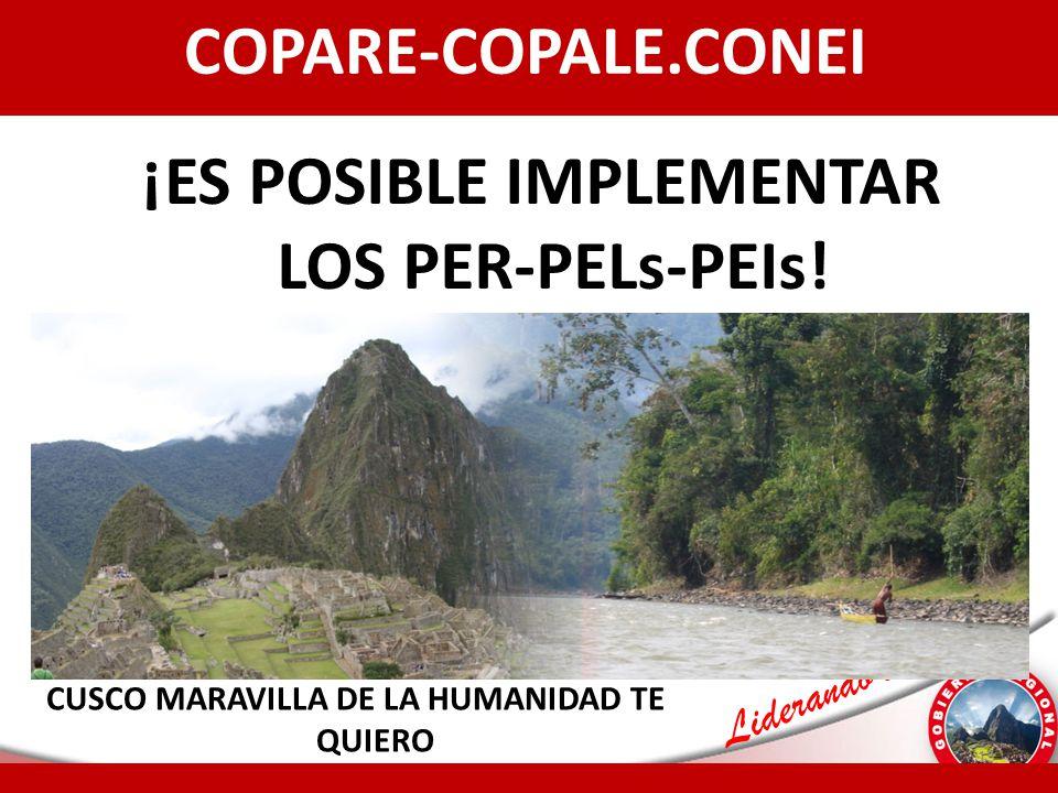 COPARE-COPALE.CONEI ¡ES POSIBLE IMPLEMENTAR LOS PER-PELs-PEIs!