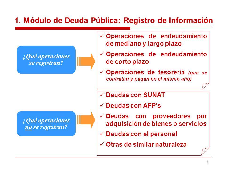 1. Módulo de Deuda Pública: Registro de Información