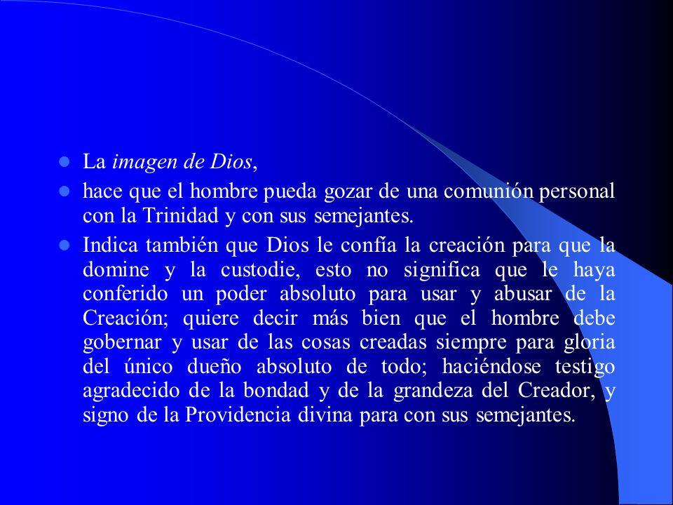 La imagen de Dios, hace que el hombre pueda gozar de una comunión personal con la Trinidad y con sus semejantes.