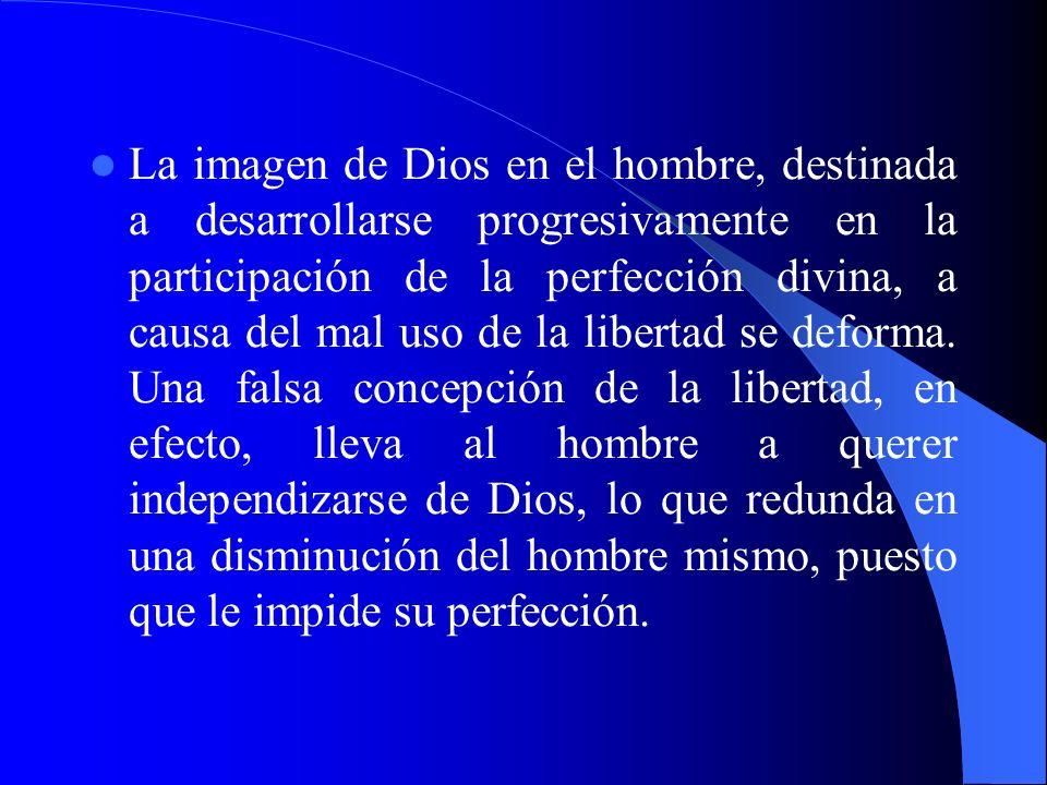 La imagen de Dios en el hombre, destinada a desarrollarse progresivamente en la participación de la perfección divina, a causa del mal uso de la libertad se deforma.