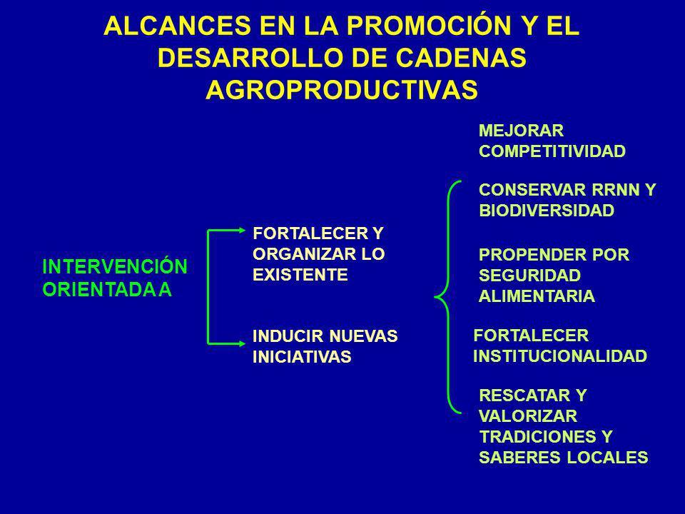 ALCANCES EN LA PROMOCIÓN Y EL DESARROLLO DE CADENAS AGROPRODUCTIVAS