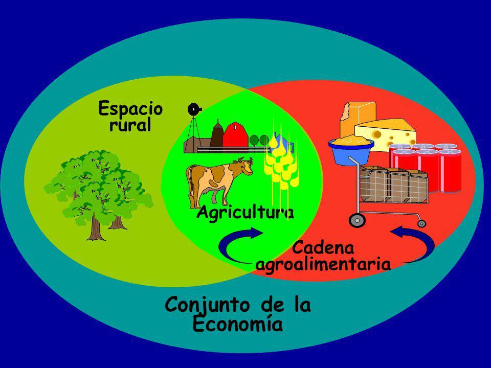 Conjunto de la Economía