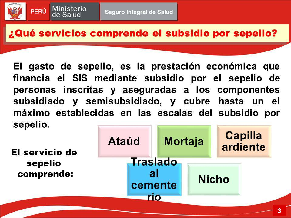 ¿Qué servicios comprende el subsidio por sepelio