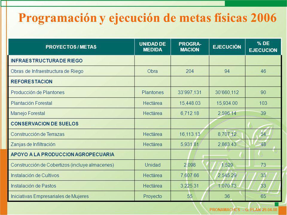 Programación y ejecución de metas físicas 2006