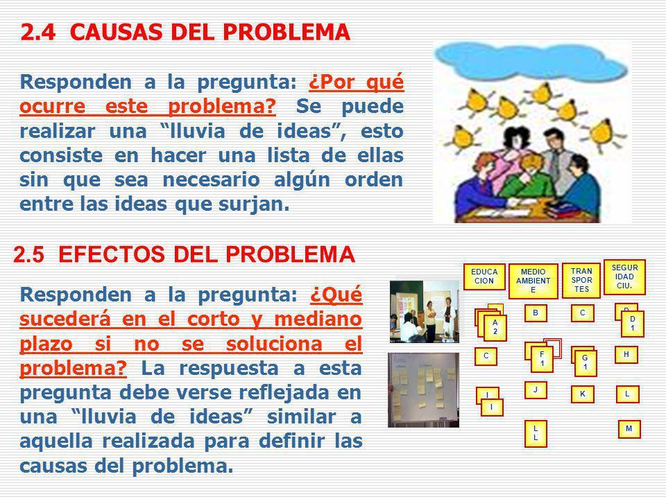 2.4 CAUSAS DEL PROBLEMA 2.5 EFECTOS DEL PROBLEMA