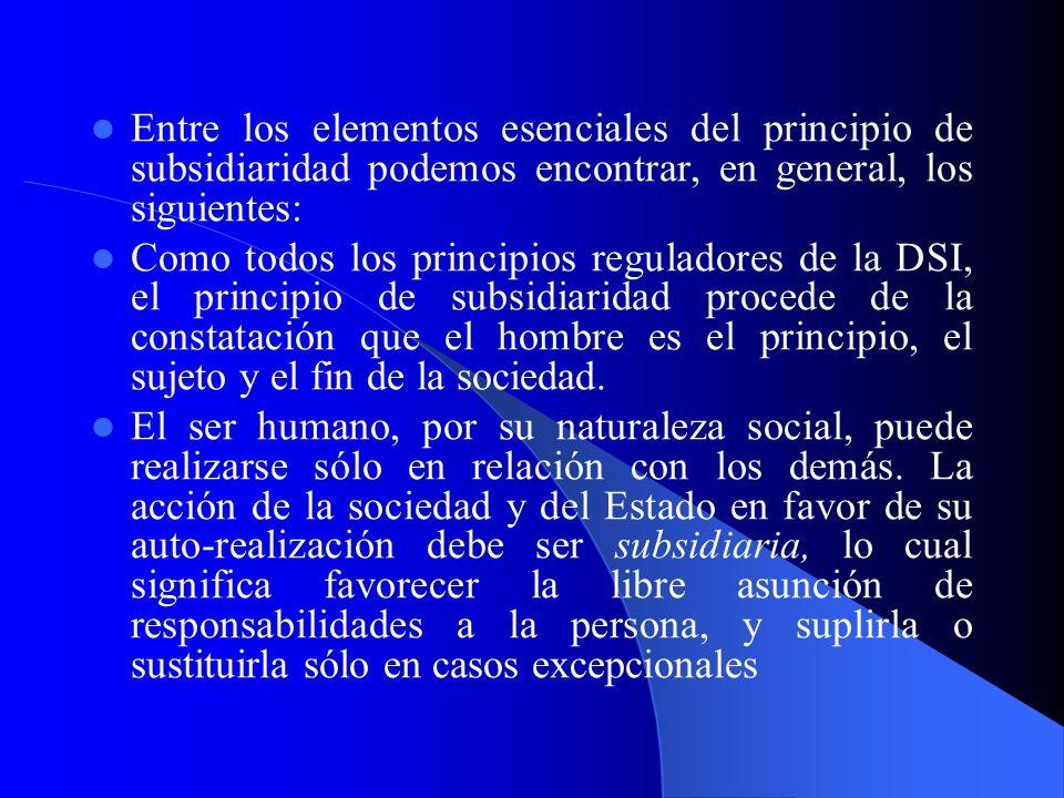 Entre los elementos esenciales del principio de subsidiaridad podemos encontrar, en general, los siguientes: