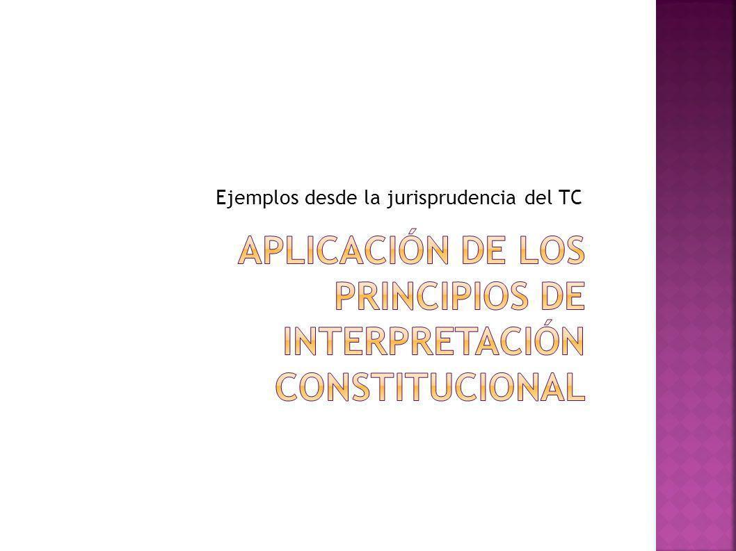 aplicACIÓN DE LOS PRINCIPIOS DE INTERPRETACIÓN CONSTITUCIONAL