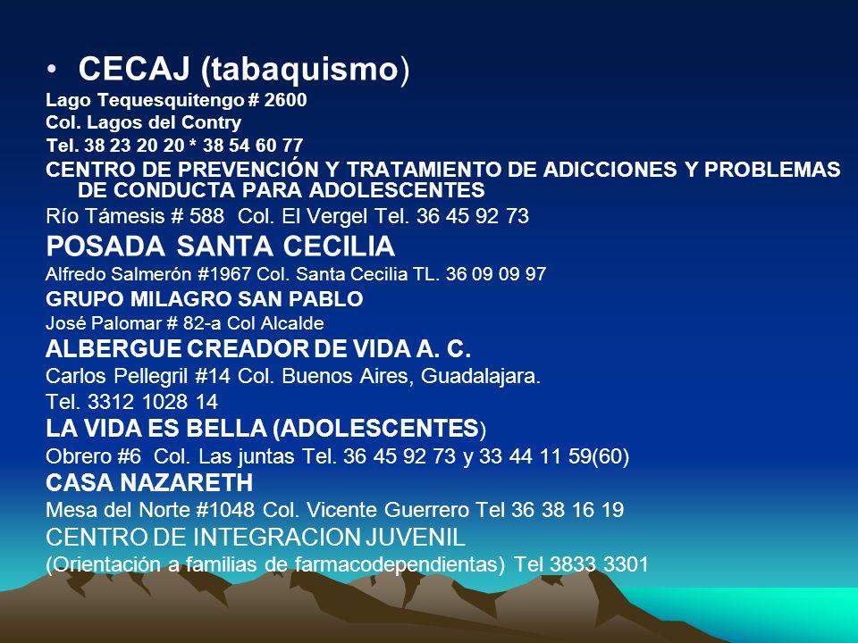 CECAJ (tabaquismo) POSADA SANTA CECILIA ALBERGUE CREADOR DE VIDA A. C.