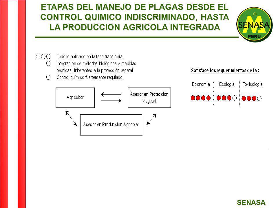ETAPAS DEL MANEJO DE PLAGAS DESDE EL CONTROL QUIMICO INDISCRIMINADO, HASTA LA PRODUCCION AGRICOLA INTEGRADA