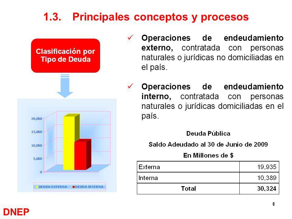 1.3. Principales conceptos y procesos Clasificación por Tipo de Deuda