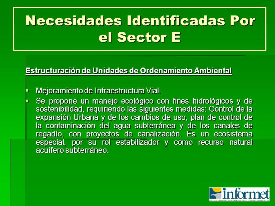 Necesidades Identificadas Por el Sector E