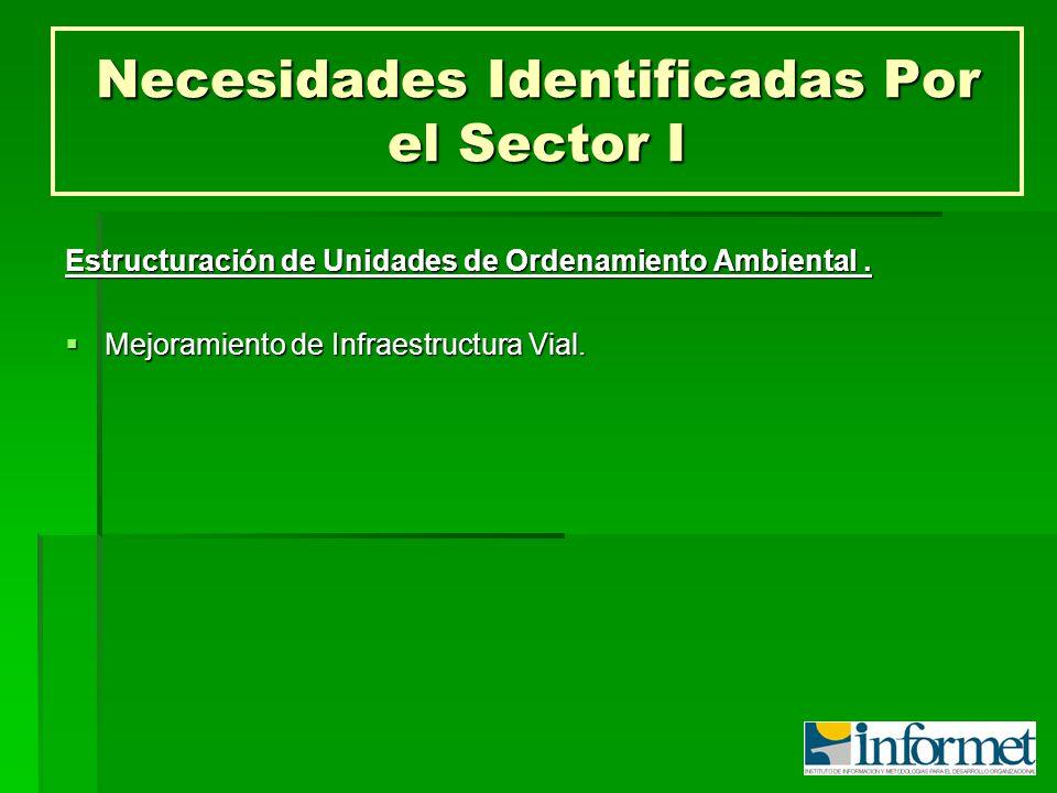 Necesidades Identificadas Por el Sector I