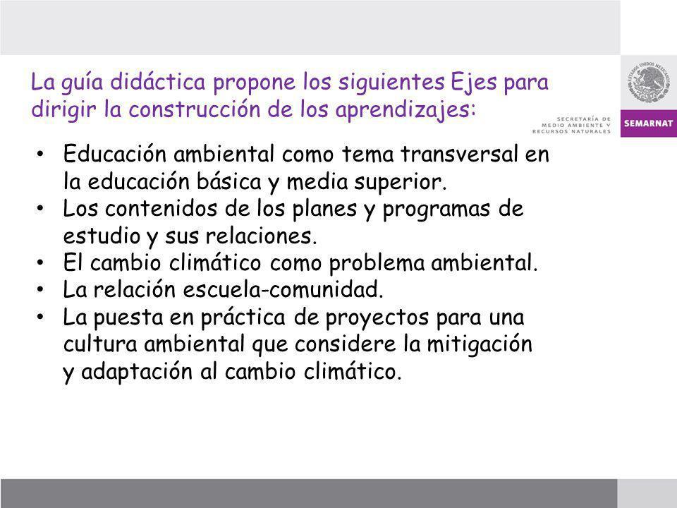 La guía didáctica propone los siguientes Ejes para dirigir la construcción de los aprendizajes: