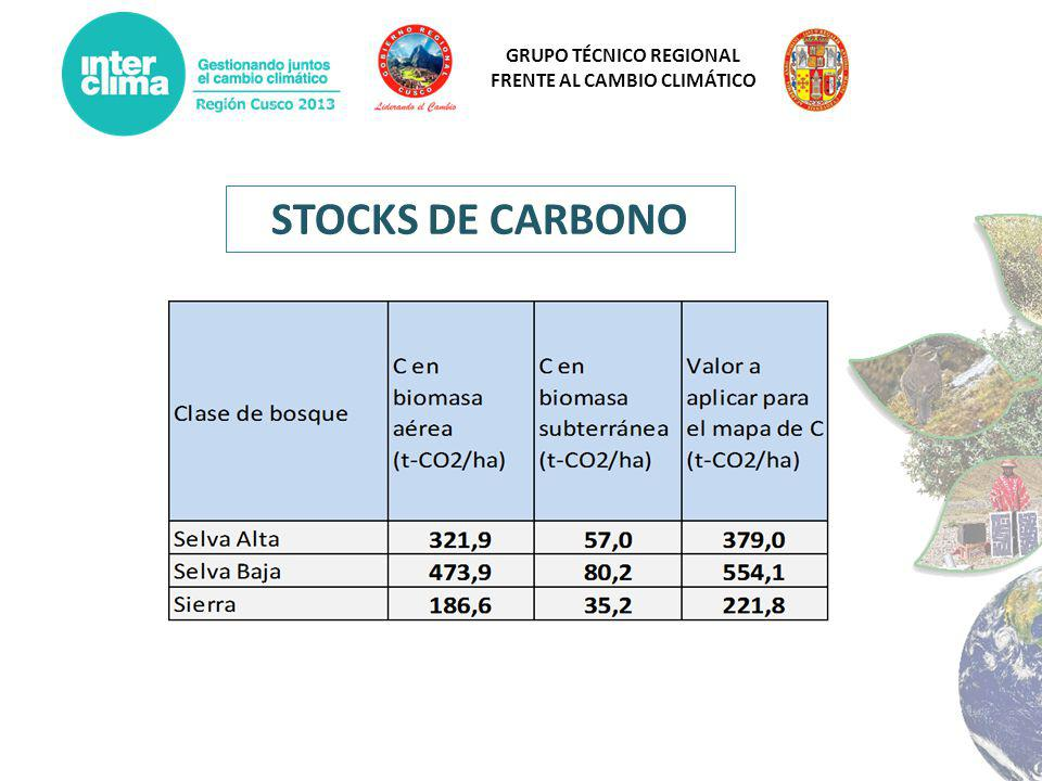 STOCKS DE CARBONO