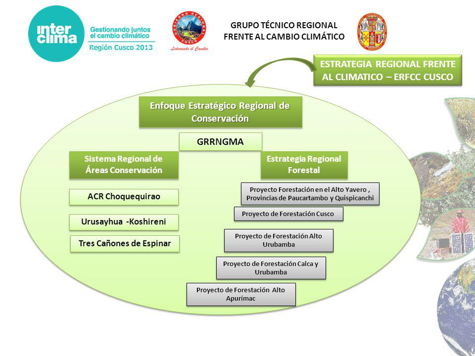 ESTRATEGIA REGIONAL FRENTE AL CLIMATICO – ERFCC CUSCO