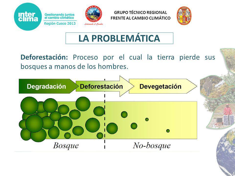 LA PROBLEMÁTICA Deforestación: Proceso por el cual la tierra pierde sus bosques a manos de los hombres.
