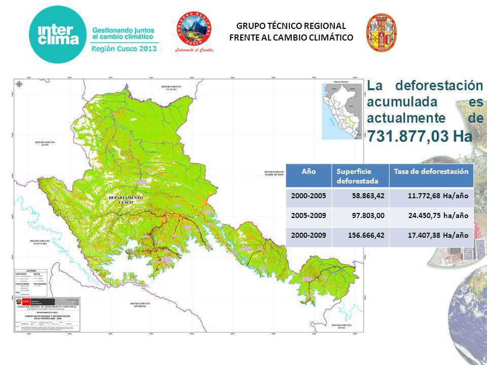 La deforestación acumulada es actualmente de 731.877,03 Ha