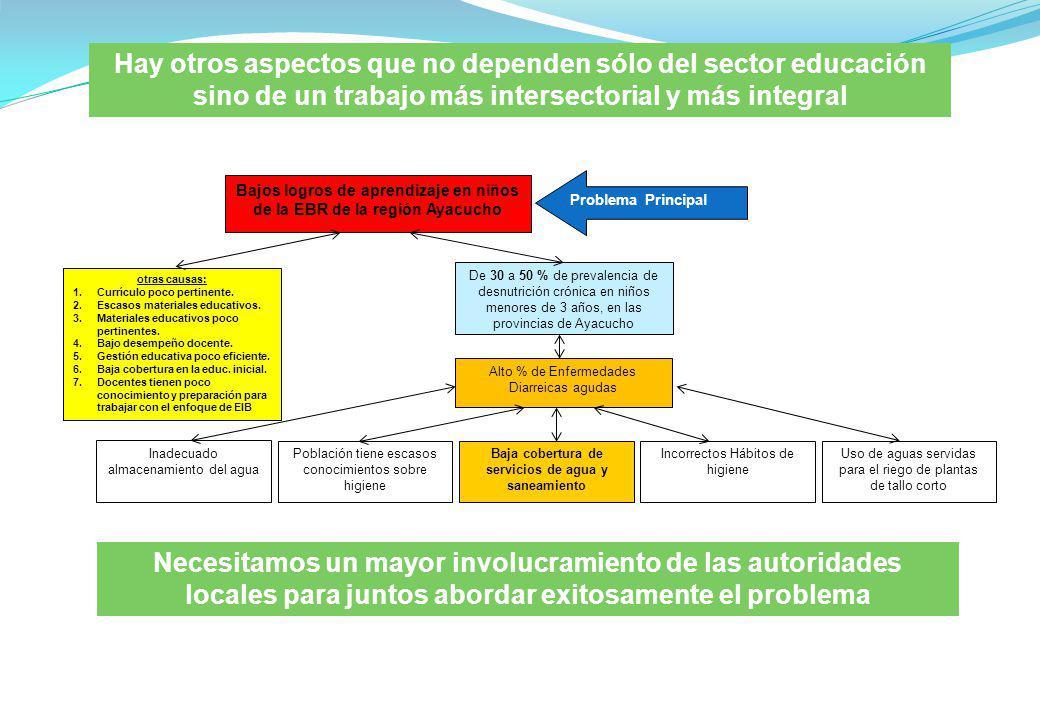 Hay otros aspectos que no dependen sólo del sector educación sino de un trabajo más intersectorial y más integral