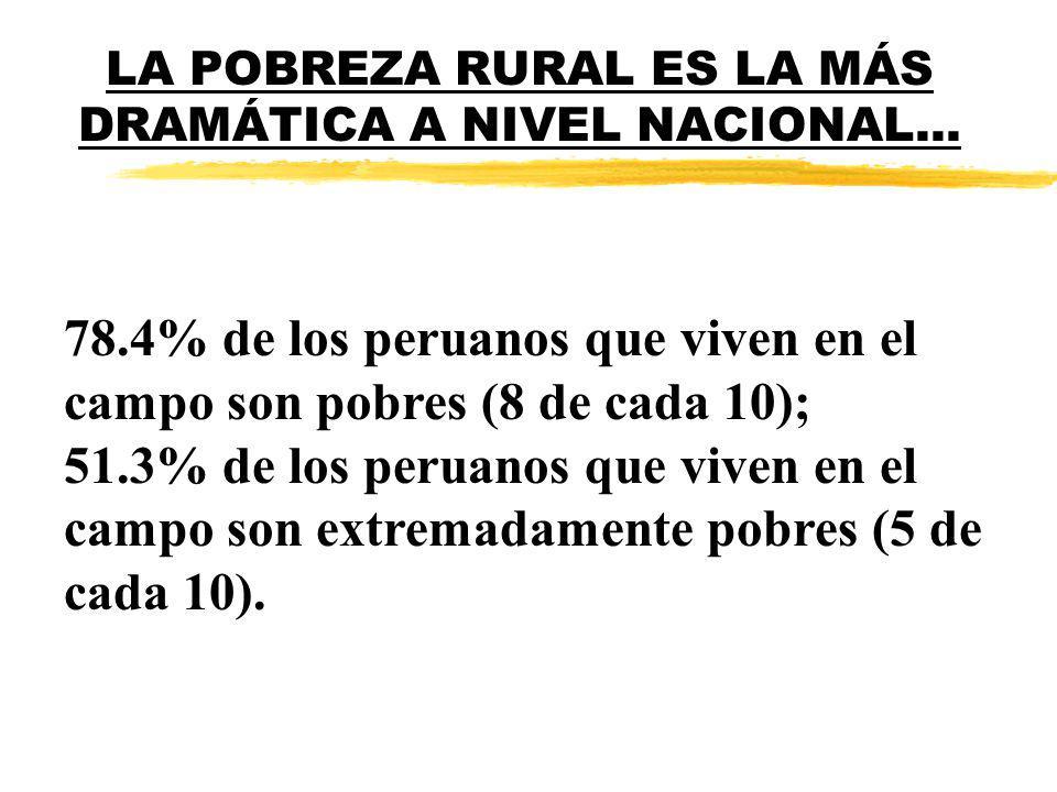 LA POBREZA RURAL ES LA MÁS DRAMÁTICA A NIVEL NACIONAL...