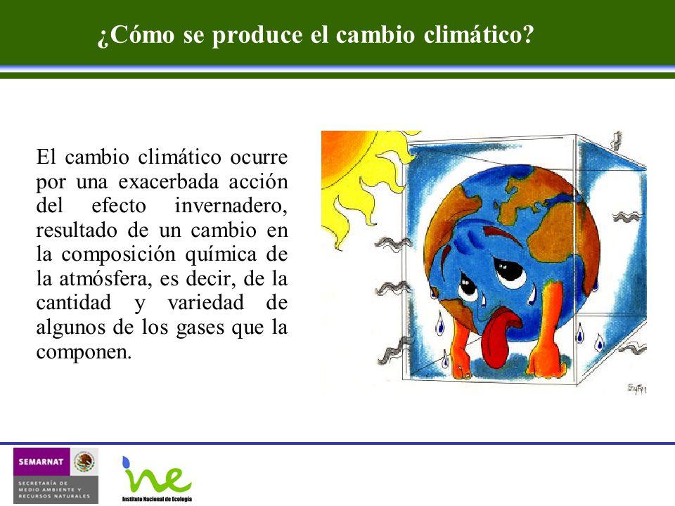 ¿Cómo se produce el cambio climático