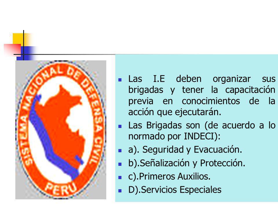 Las I.E deben organizar sus brigadas y tener la capacitación previa en conocimientos de la acción que ejecutarán.
