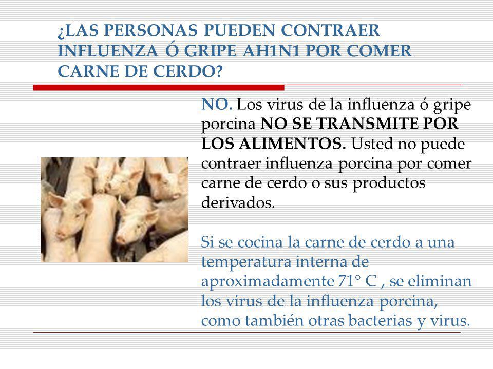 ¿LAS PERSONAS PUEDEN CONTRAER INFLUENZA Ó GRIPE AH1N1 POR COMER CARNE DE CERDO