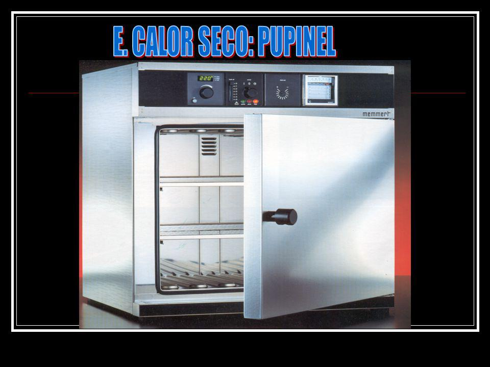 E. CALOR SECO: PUPINEL