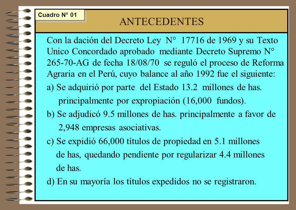 ANTECEDENTES Cuadro N° 01.