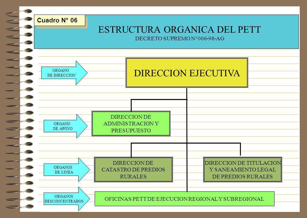 ESTRUCTURA ORGANICA DEL PETT