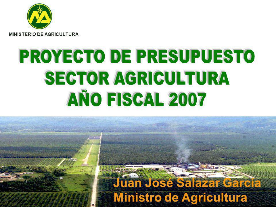 PROYECTO DE PRESUPUESTO SECTOR AGRICULTURA AÑO FISCAL 2007