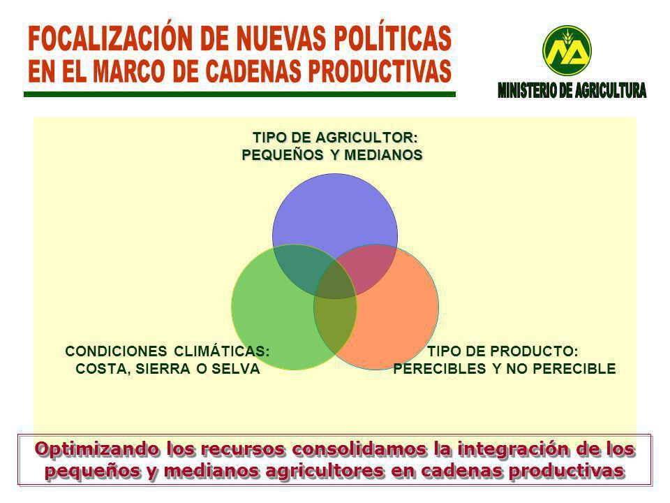 FOCALIZACIÓN DE NUEVAS POLÍTICAS EN EL MARCO DE CADENAS PRODUCTIVAS