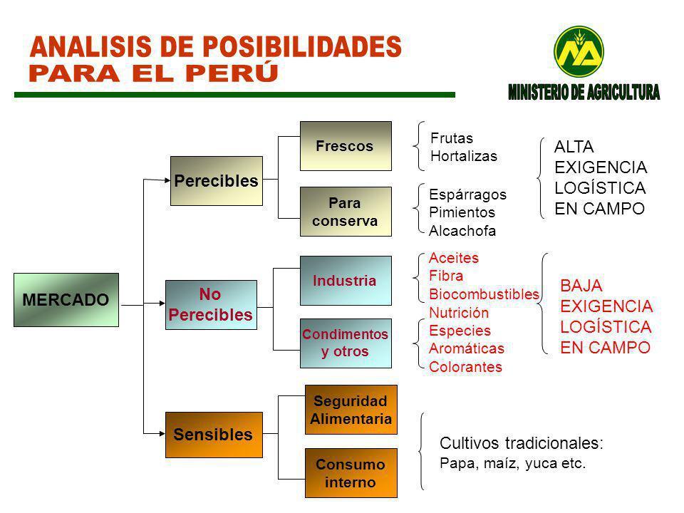 ANALISIS DE POSIBILIDADES PARA EL PERÚ