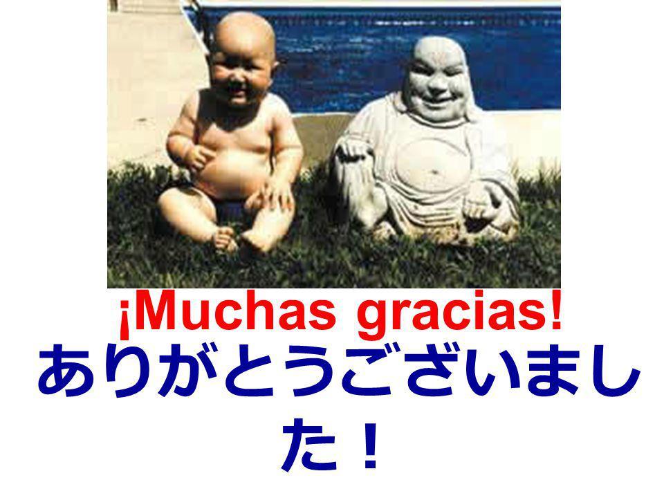 ¡Muchas gracias! ありがとうございました!