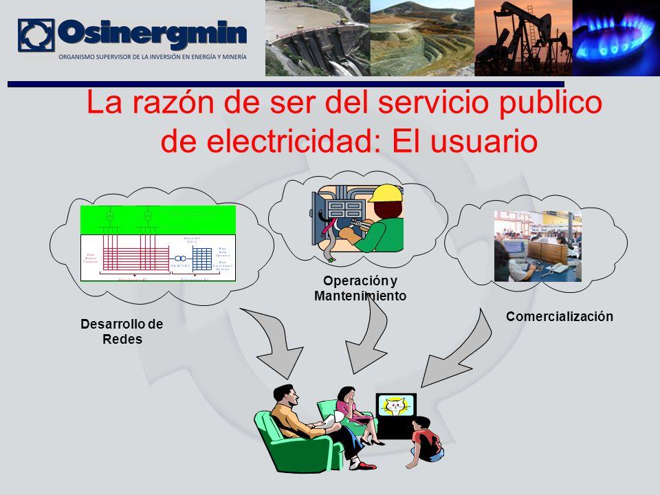 La razón de ser del servicio publico de electricidad: El usuario