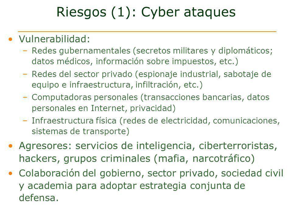 Riesgos (1): Cyber ataques