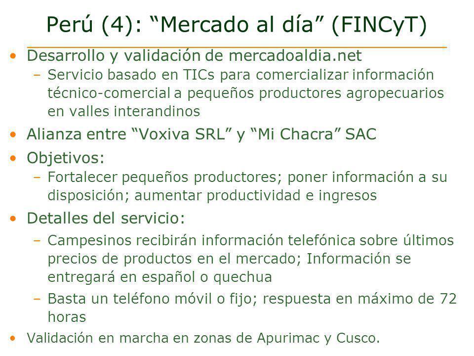 Perú (4): Mercado al día (FINCyT)
