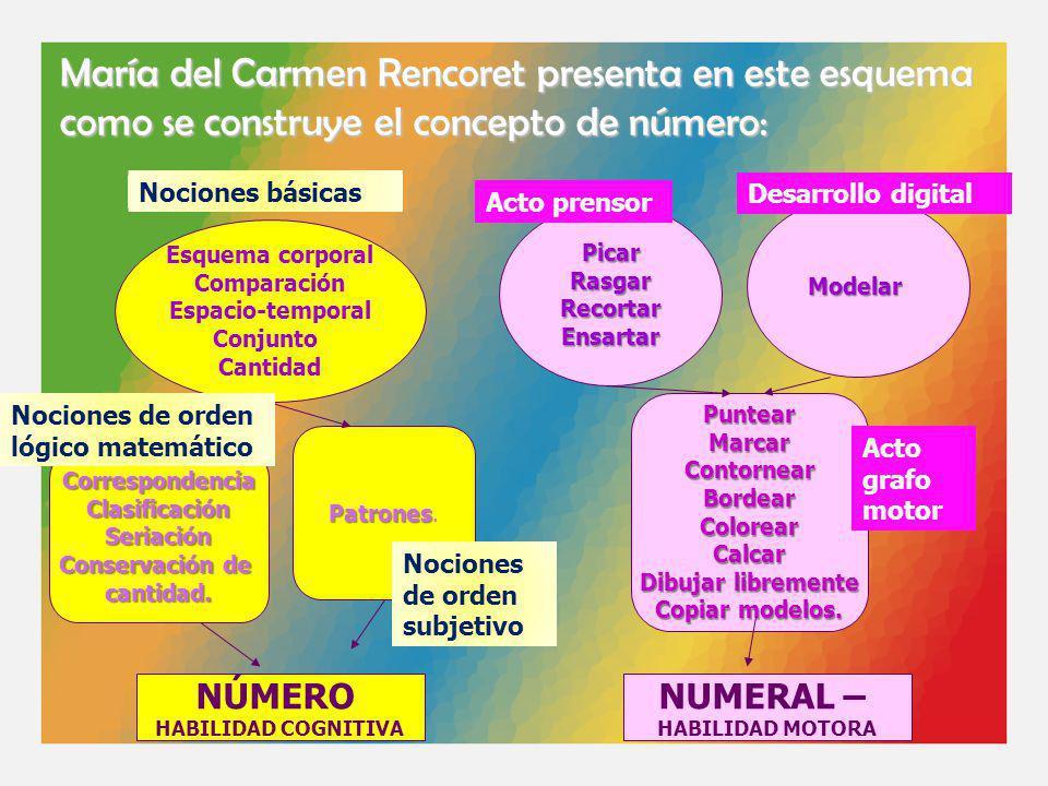 María del Carmen Rencoret presenta en este esquema como se construye el concepto de número: