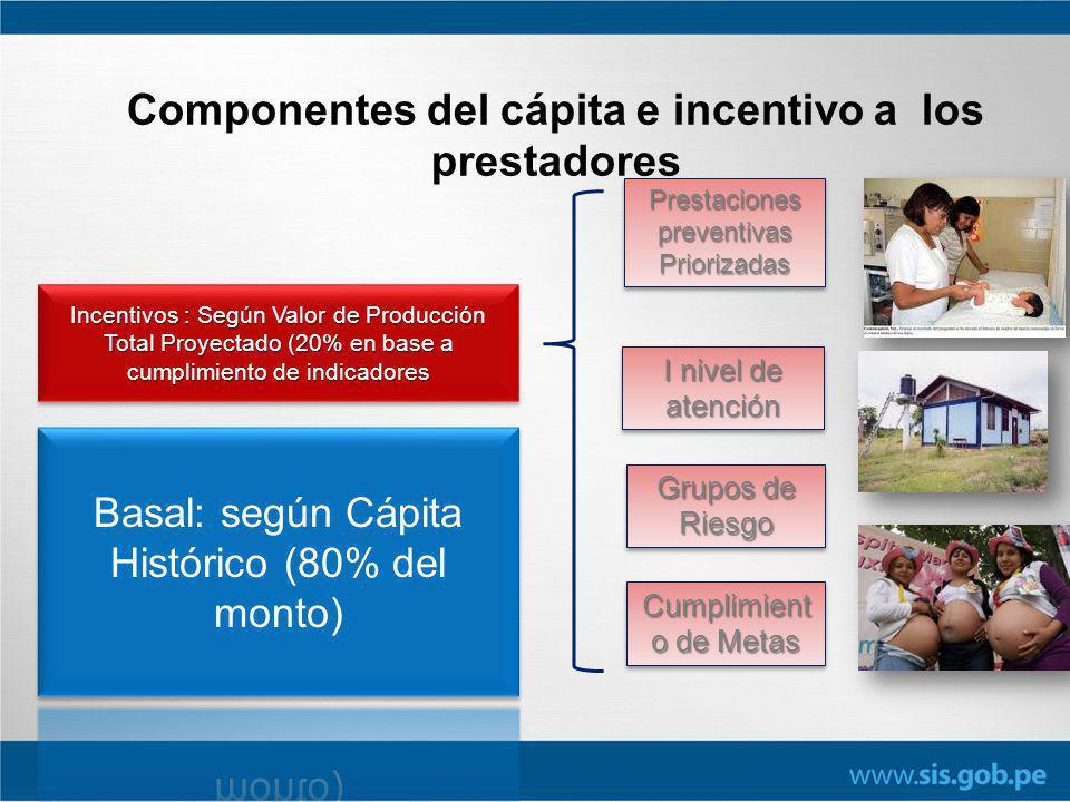 Componentes del cápita e incentivo a los prestadores