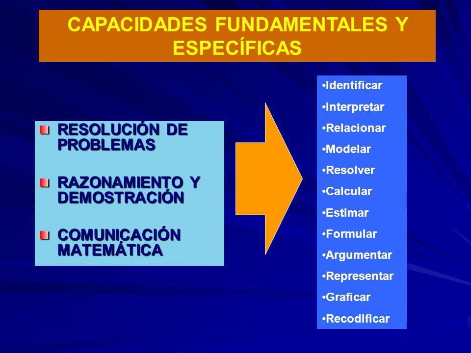 CAPACIDADES FUNDAMENTALES Y ESPECÍFICAS