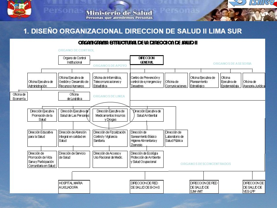 1. DISEÑO ORGANIZACIONAL DIRECCION DE SALUD II LIMA SUR