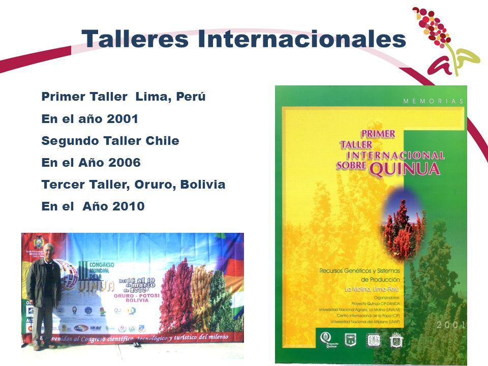 Talleres Internacionales