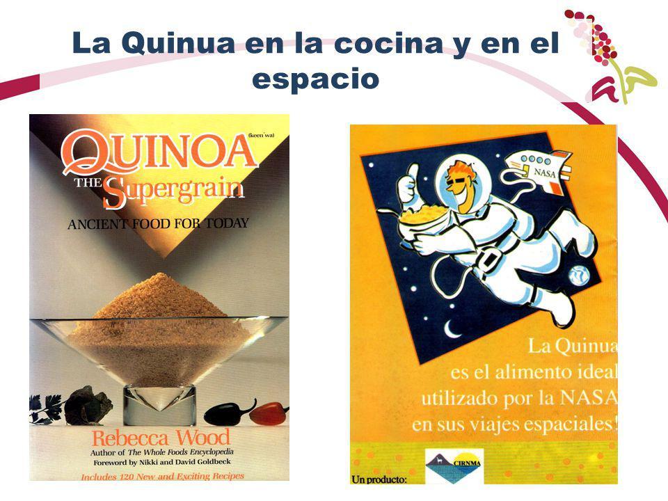 La Quinua en la cocina y en el espacio