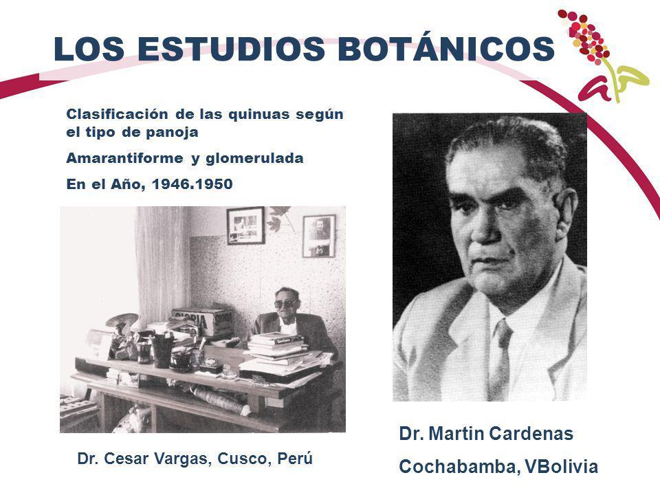 LOS ESTUDIOS BOTÁNICOS