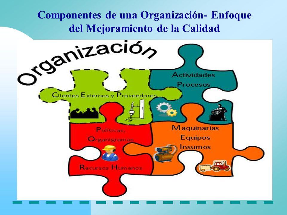 Componentes de una Organización- Enfoque del Mejoramiento de la Calidad
