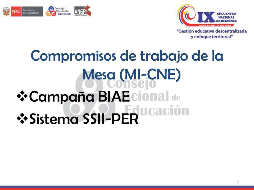 Compromisos de trabajo de la Mesa (MI-CNE)